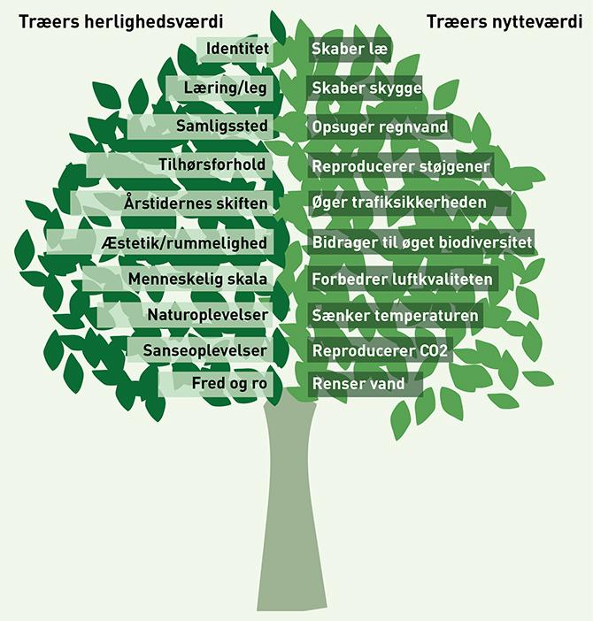 Træers nytte- og herlighedsværdi