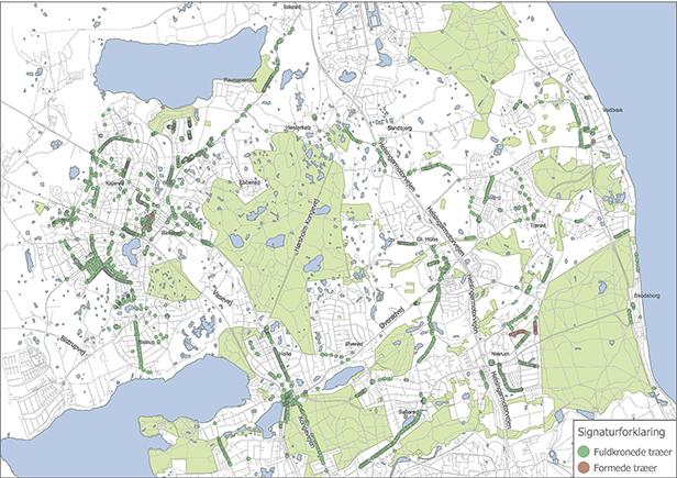 Dette kort viser fordelingen af fuldkronede og formede træer i hele Rudersdal Kommune. Kort: Træer i bycentre og langs veje i Rudersdal Kommune, status pr. 1. maj 2017.