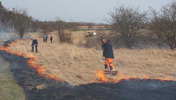 Afbrænding ved Byageren i Birkerød