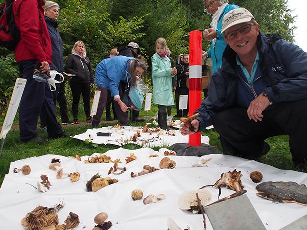 Rudersdal Kommune har arrangeret svampetur i skovene ved Furesøen