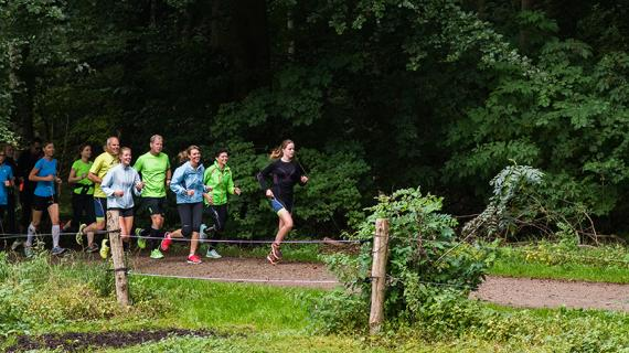 Løbetur i skoven