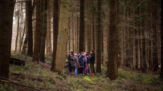 På tur i skoven med rygestop i naturen