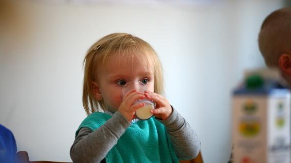 Frokostordning Børneområdet