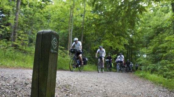 Foto fra RudersdalRuten - flok på cykeltur