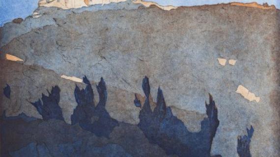 Bjergplateau med trælyng