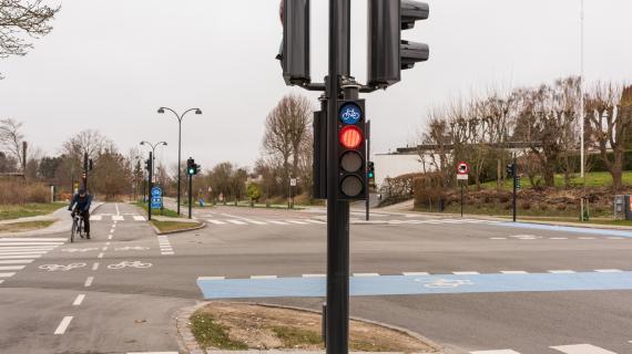 Signalanlæg ved Birkerød skole