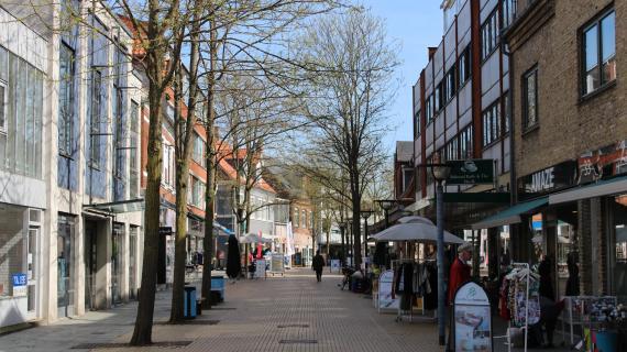 Træer Birkerød Hovedgade
