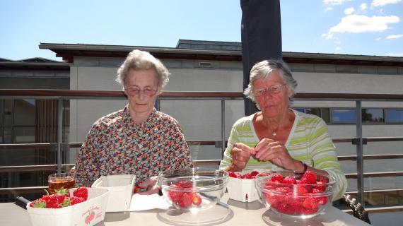 Jordbær på terrassen