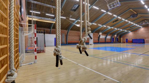 Foto: Søndervangshallen - indendørs