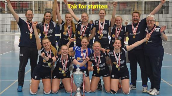 Holte Volley IF - Danske Mestre 2019