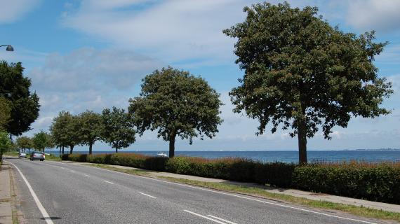 Skodsborg Strandvej