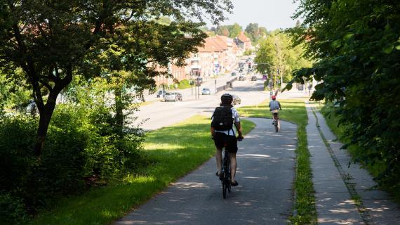 Cyklist på Kongecvejen en forårsdag.