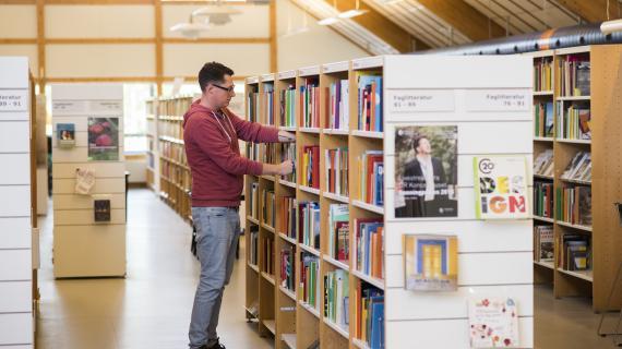 Biblioteksstrategitema