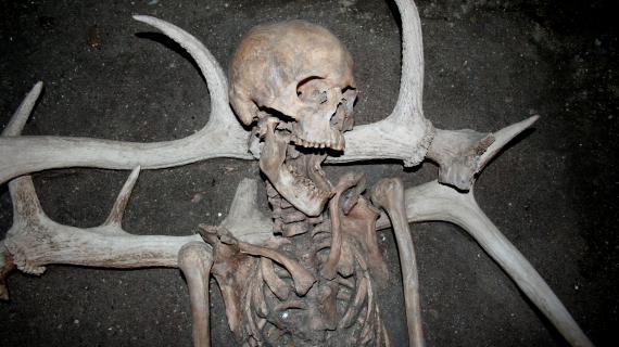 Ældre kvinde gravlagt på kronhjortegevir