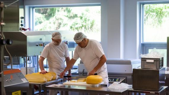 Vi smager på test-oste fra Chr. Hansens forsøgsmejeri.