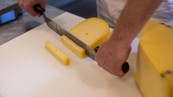Mejerister i Chr. Hansens forsøgsmejeri giver en smagsprøve på nogle af deres test-oste.