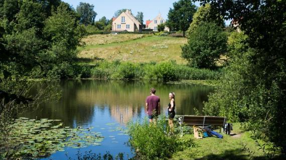 Søen ved Langedam