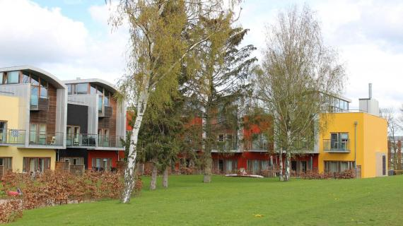Rækkehusbebyggelse, Pilehøj i Birkerød opført i 2009