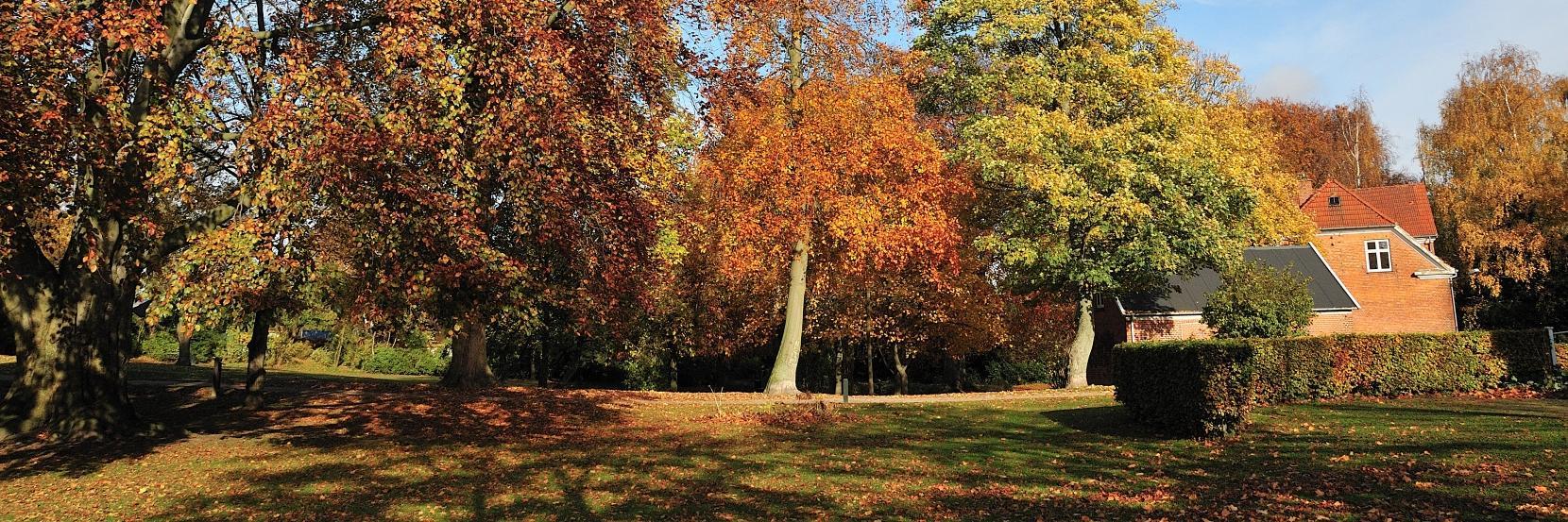 Efterår i Cathrinelystparken