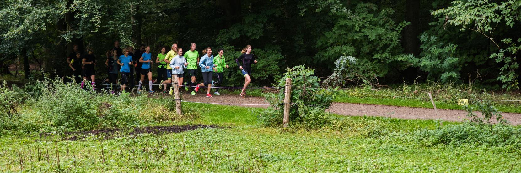 SNIK løbeklub i skoven