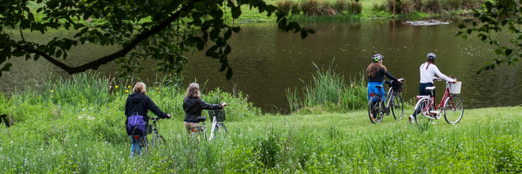 Fire kvinder på cykeltur ved en sø i en skov