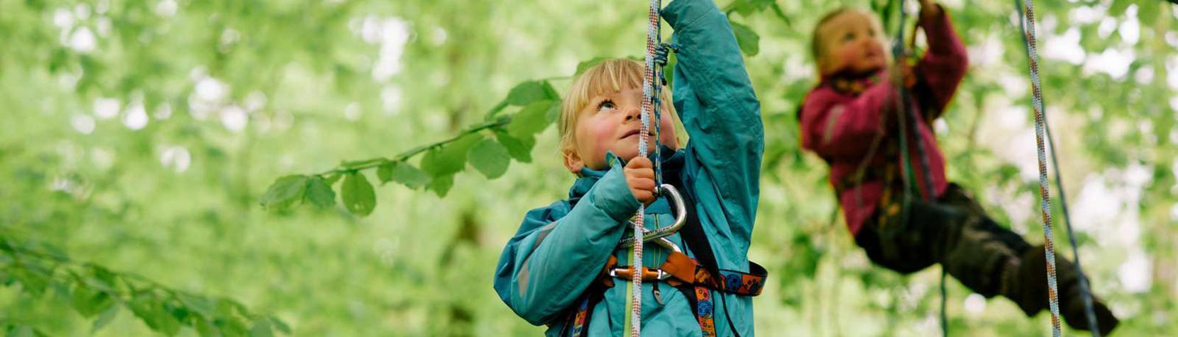 Børn, der klatrer i træer på Skovens dag