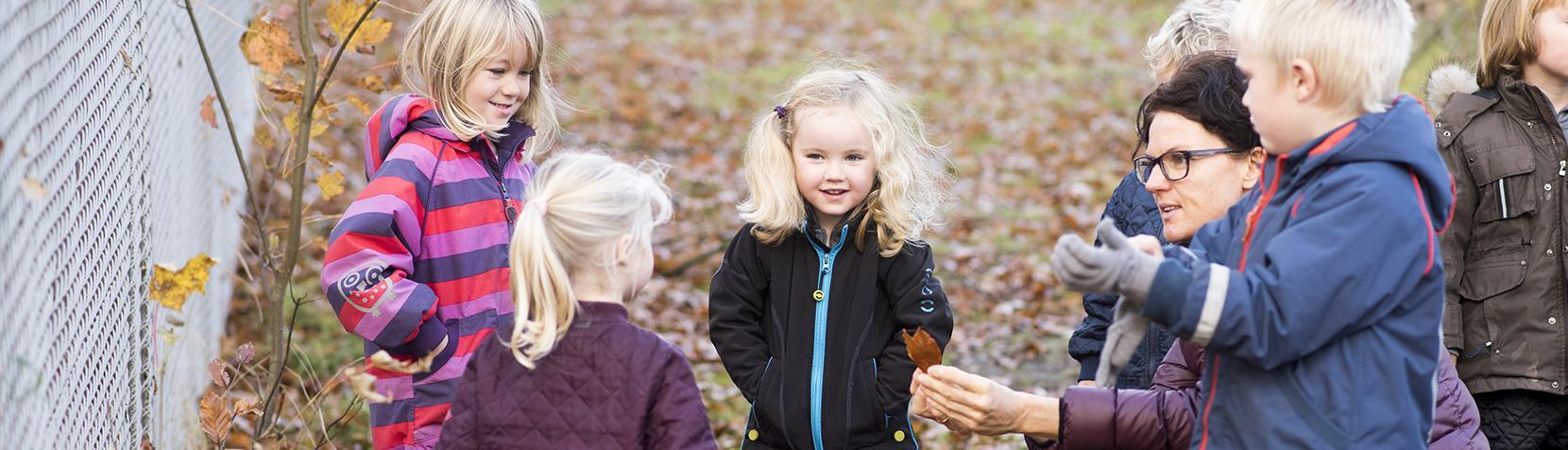 Børn kigger på blade
