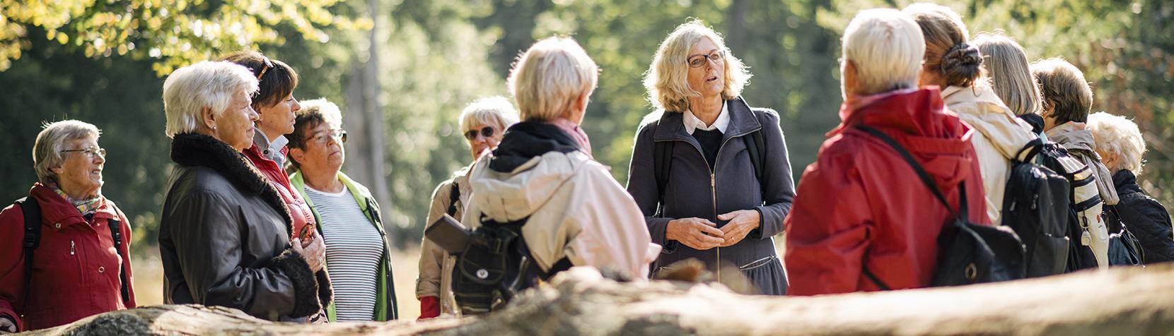 Senior borgere på tur i skoven