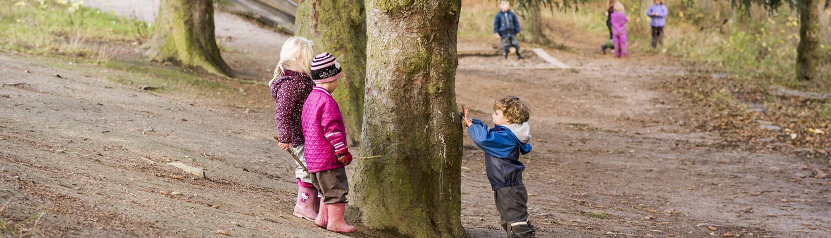 Børn leger i skoven