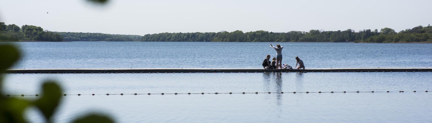 View of lake and Danish nature