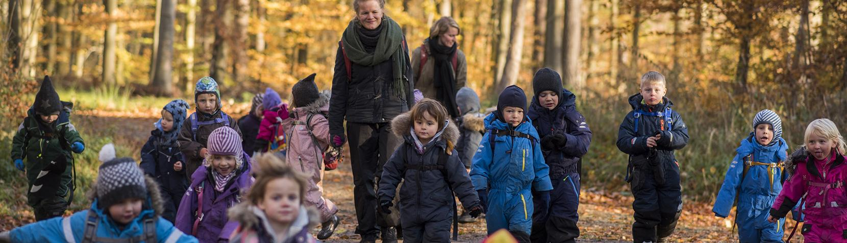 Tudsens børn på tur i skoven