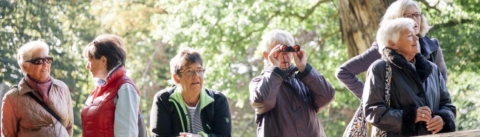 Seniorer på skovtur