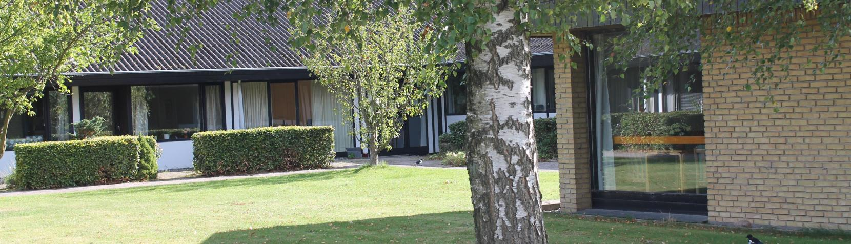 Billedet viser bygninger Soldraget 37a med et birketræ foran