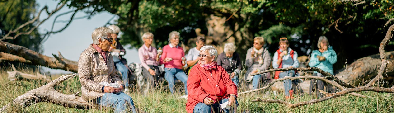 Visitkort Ældreområdet