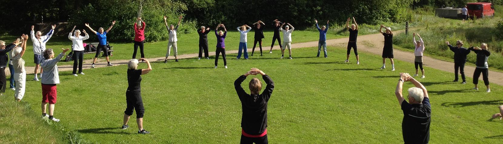 Billedet viser mennesker, der dyrker motion