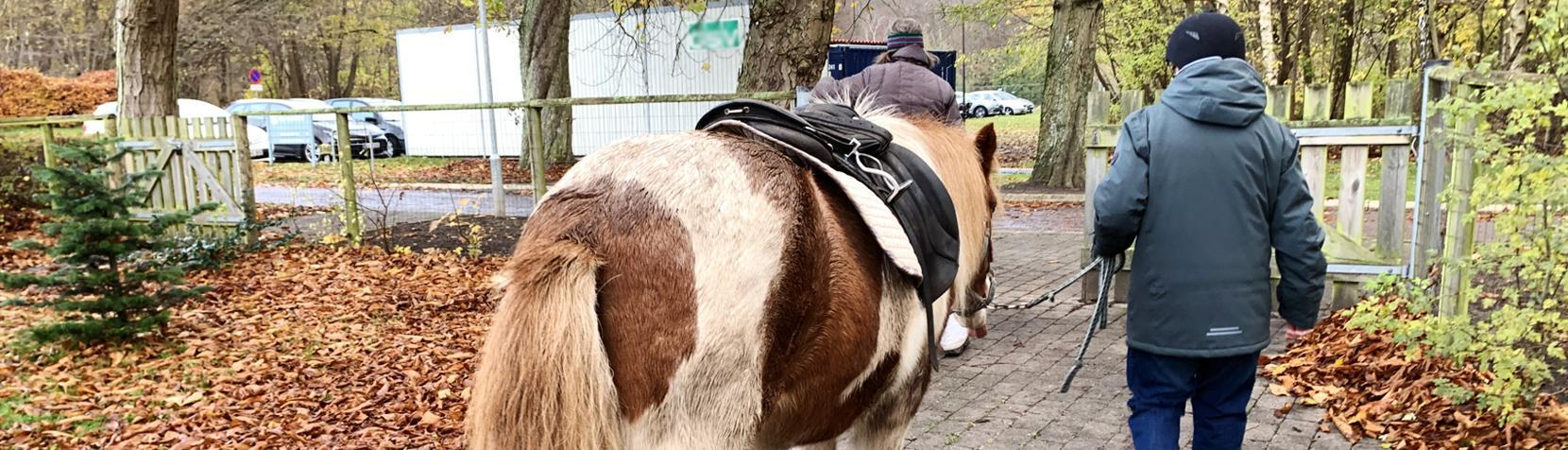 Rideklubben er et fritidstilbud tilknyttet Ebberød Kulturhus
