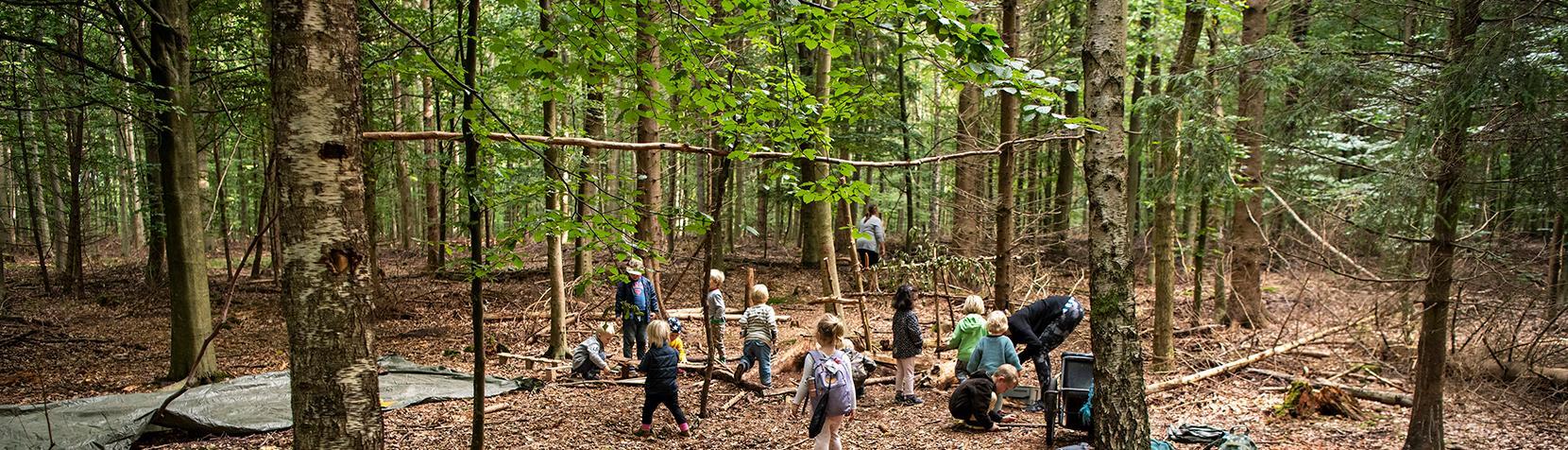 Børn fra skovbørnehave leger i skoven
