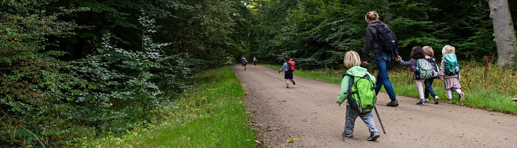 Tudsens skovbørnehave på tur i skoven