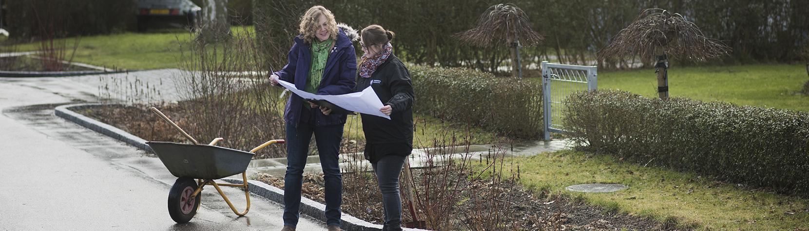 Regnbed - to personer står med trillebør og plantegning