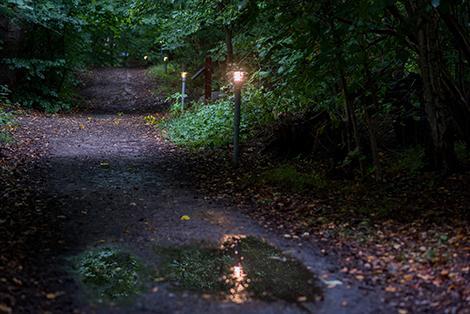 Lysløjpen i Rude Skov
