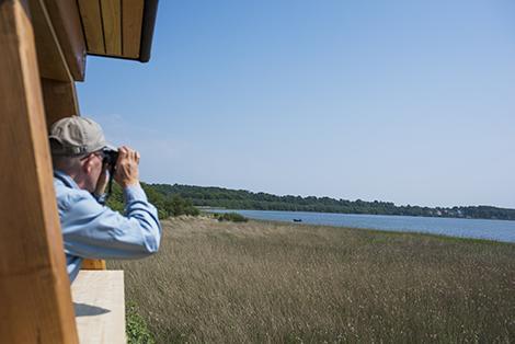 Fra Fugletårnet i Vaserne kan du nyde en fantastisk udsigt.