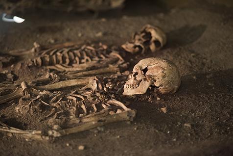 Vedbækfundene på Gl. Holtegaard rummer grave med skeletter fra Maglemosen.
