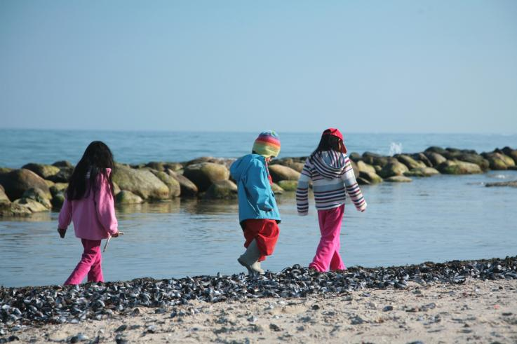 Børn ved stranden ved Stuckmannsparken
