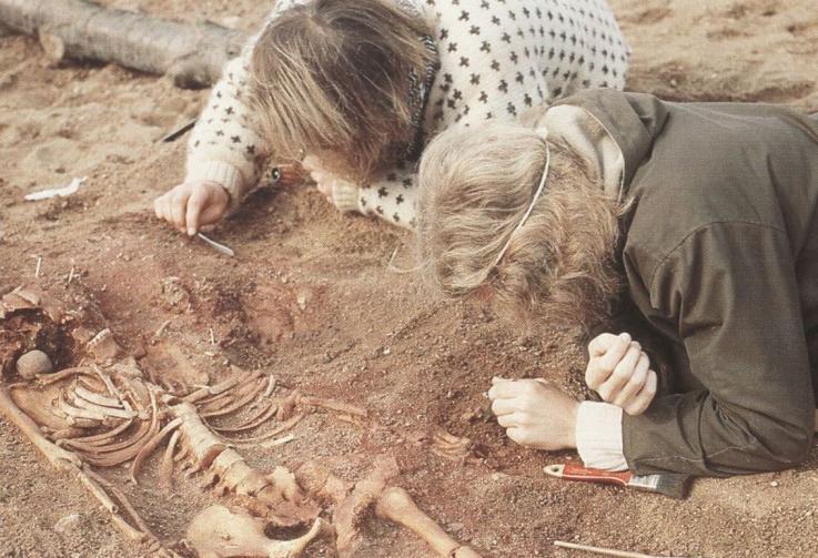 Udgravning på Henriksholm-Bøgebakken, Vedbæk 1975