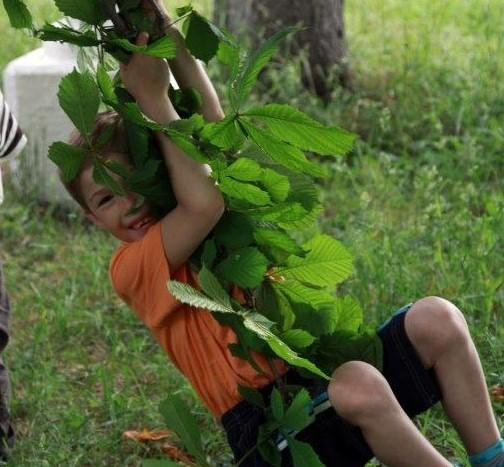 dreng gynger i skov