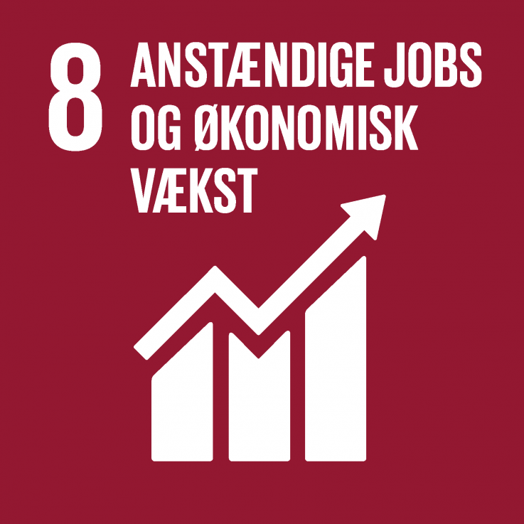 Verdensmål ianstændige jobs og økonomisk vækst