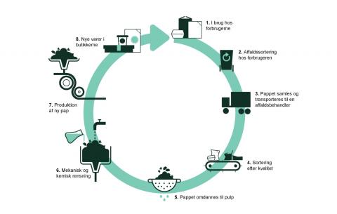 Illustration af genanvendelses-cyklus for pap: Pap og karton indsamles og sorteres. Det genanvendelige pap laves til pulp. Fra pulpen fjerner man fremmedlegmer, hvorefter pulpen kan bruges til at lave nye pap og kartonprodukter og emballage.