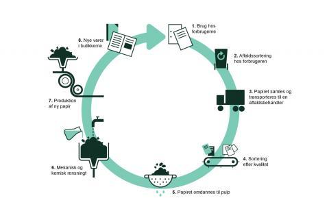 Illustration af hvordan papir håndteres og genanvendes: Papir indsamles, enten ved at du sorterer det i hjemmet, hvorefter det afhentes af en renovatør, eller ved at du kører til genbrugspladsen med det. Når papiret er samlet laves det til pulp. hvorfra man fjerner urenheder. Herefter kan pulpen bruges til f.eks. at lave karton.