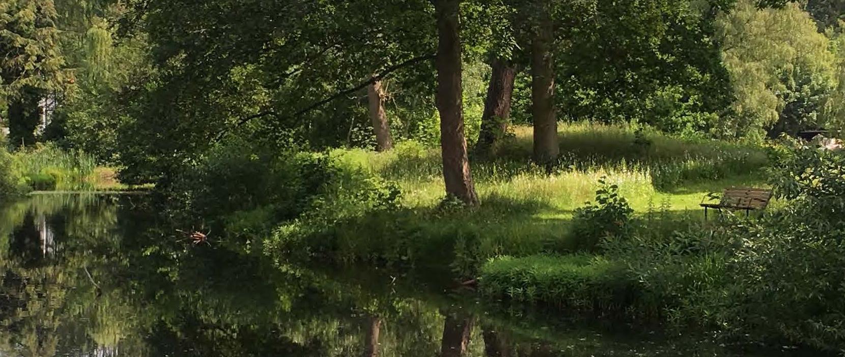 Bæredygtig drift af kommunens parker