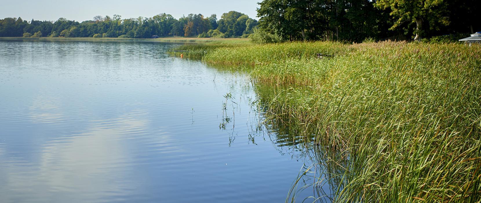 Renere søer i Rudersdal